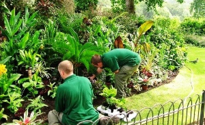 Resegone online notizie da lecco e provincia per fare for Giardiniere milano