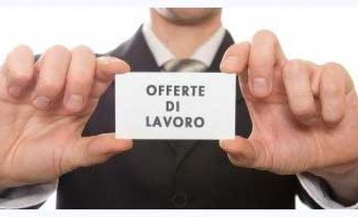 Etichette agricoltura pascolo lavoro offerte di lavoro ingegneri - Offerte di lavoro piastrellista milano ...